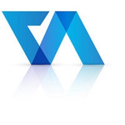 Company Registration Online - Virtual Auditor
