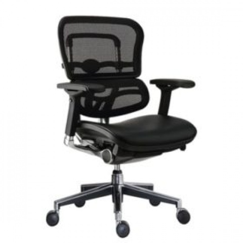 Buy Mesh Chairs
