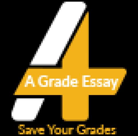 A Grade Essay
