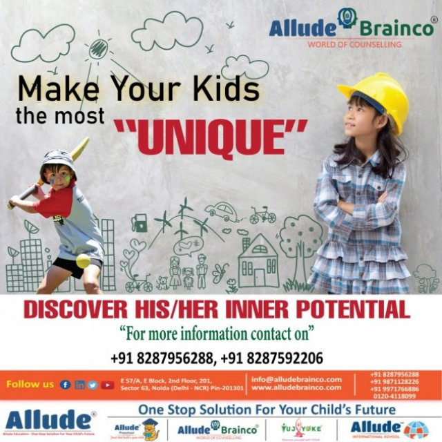Allude Brainco- Best DMIT & Career Counselling Company