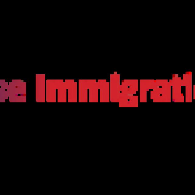 Arise Immigration Consultant