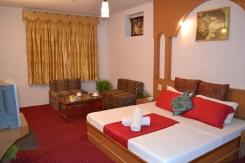 Hotle Pranjal Inn Manali - 8882225096